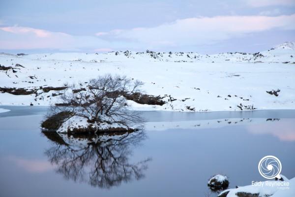 ijsland-2017-eddy-reynecke-fotografie-21-van-36