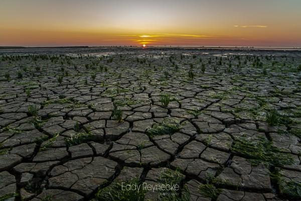 zonsondergang-moddergat-eddy-reynecke-photography-11-van-16