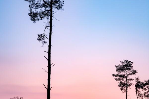 zonsondergang-schoonloo-eddy-reynecke-photography-4-van-5