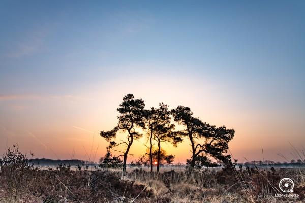 zonsopkomst-baloerveld-eddy-reynecke-photography-2-van-9-2