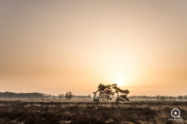 zonsopkomst-baloerveld-eddy-reynecke-photography-9-van-9
