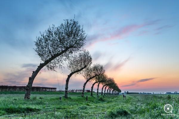zonsopkomst-noorddijk-groningen