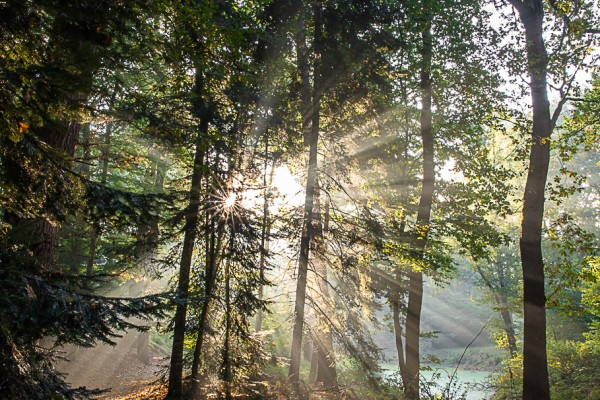 zonsopkomst-slochterbos-eddy-reynecke-photography-6-van-22