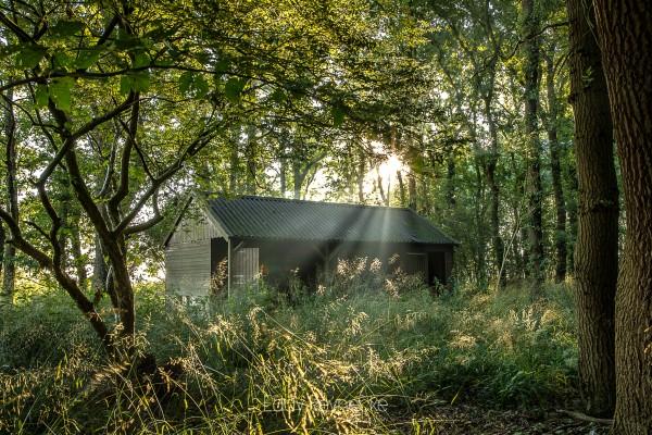 zonsopkomst-met-mist-annen-eddy-reynecke-photography-11-van-14