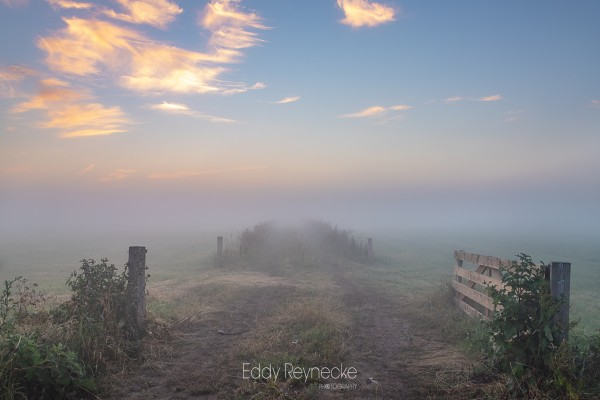 zonsopkomst-met-mist-annen-eddy-reynecke-photography-3-van-14