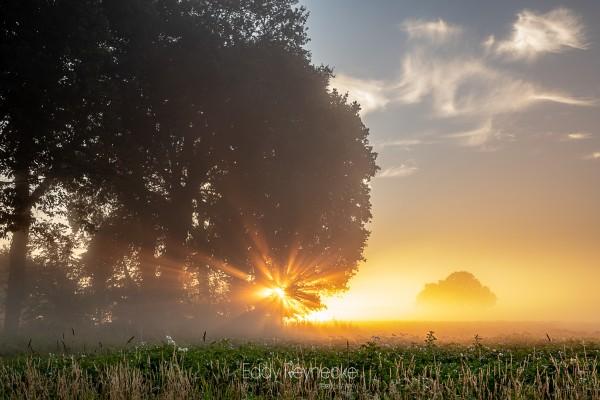 zonsopkomst-met-mist-annen-eddy-reynecke-photography-5-van-14