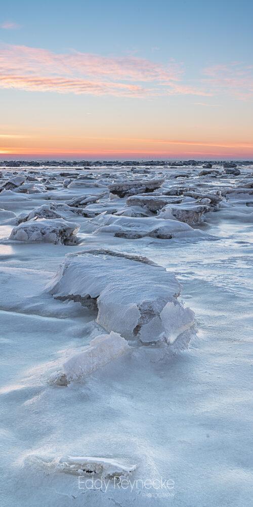 Arctic Vibes